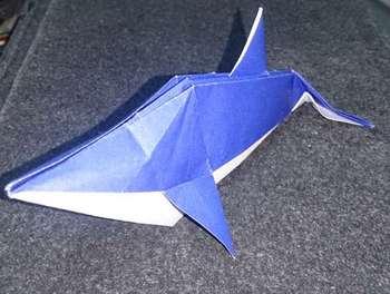s_dolphin4.jpg